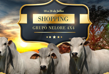 SHOPPING GRUPO NELORE 4X4