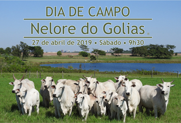 DIA DE CAMPO NELORE DO GOLIAS